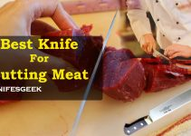 Best Knife for Cutting Meat